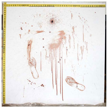 experimental detection of blood under painted surfaces fig1