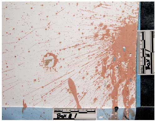 experimental detection of blood under painted surfaces fig8
